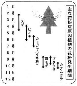 17ka-2